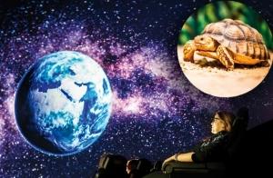 Entrada Museo de la Ciencia Eureka! + Planetarium