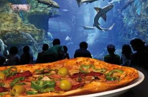 Menú en La Piazzetta de Gros + entrada al Aquarium